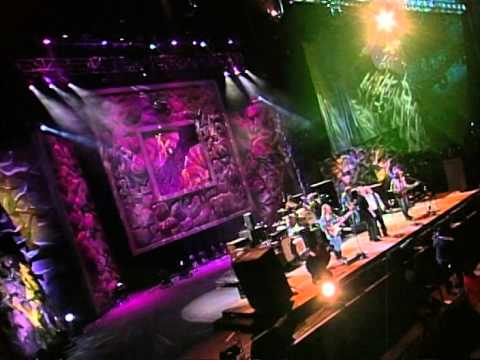 Crosby, Stills, Nash & Young - Cinnamon Girl (Live at Farm Aid 2000)
