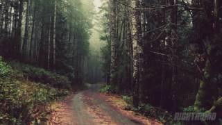 Native American Flute & Rain Meditation Music 432hz | Deep Sleep, Relaxing Spa Music, Binural Beats