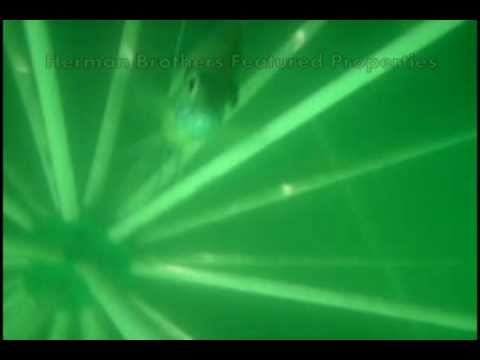 Underwater Fish Structure Footage