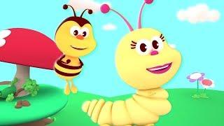 The Yellow Caterpillar Song | Kindergarten Music & Cartoons For Babies - Kids Channel