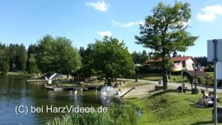 HarzVideos - Birnbaumteich bei Neudorf im Harz.