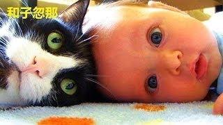 【動物 かわいい】愛らしい猫と赤ちゃん抱きしめる - 赤ちゃんの愛猫コ...