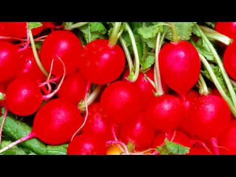 РЕДИСКА - ПОЛЬЗА И ВРЕД | редис польза, чем полезна редиска