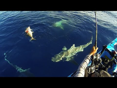 Keys Kayak Fishing - That Escalated Quickly