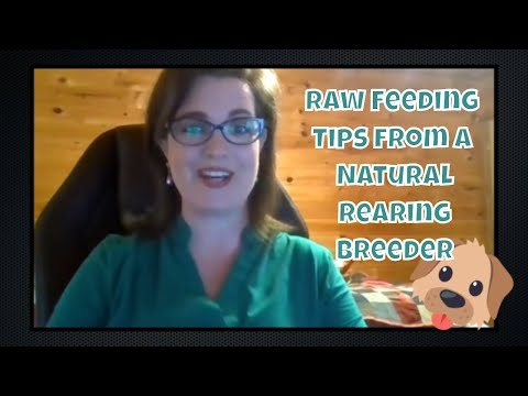 Raw Feeding Tips from a Natural Rearing Breeder