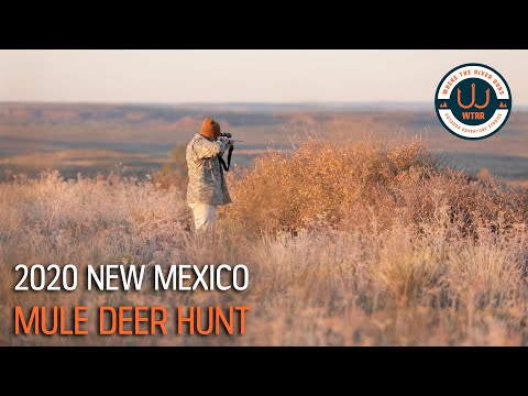 New Mexico Mule Deer Hunt 2019 - Mike's First Tag Ever!