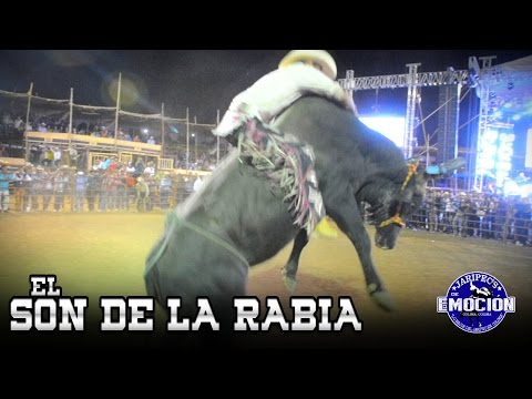 EL SON DE LA RABIA - BANDA 466 PASO A PASO (Estudio 2015)