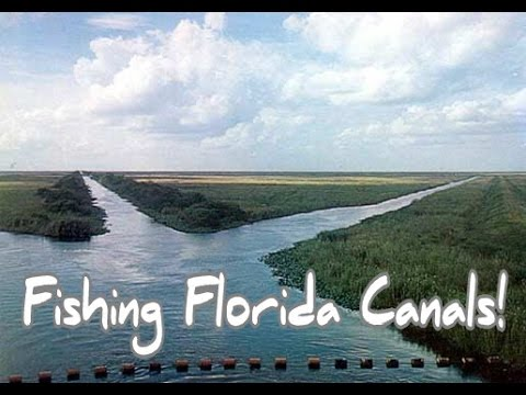 FLORIDA CANAL FISHING!