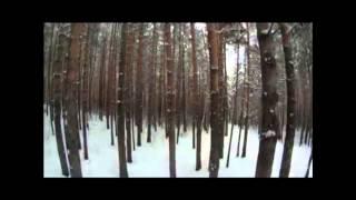 Парк лесоводов