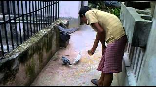 LOVE N CARE FOR ANIMALS  shelter in 1997