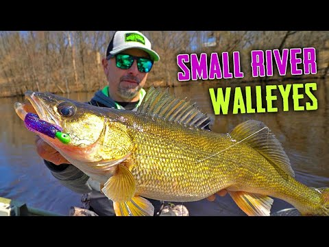 Jigging UPSTREAM For SMALL River Walleyes