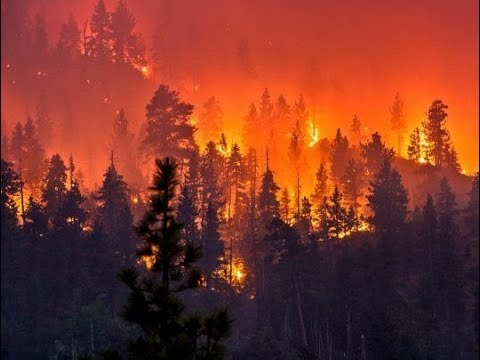 Unbelievable Footage of Wildfire Spreading Through California