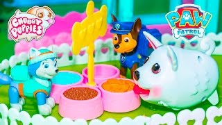 CHUBBY PUPPIES Dog Park Chubby Puppy + Paw Patrol + Wiggles Video Toys Unboxing