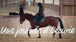 UNE JOURNÉE A L'ÉCURIE   Je travaille 4 chevaux !