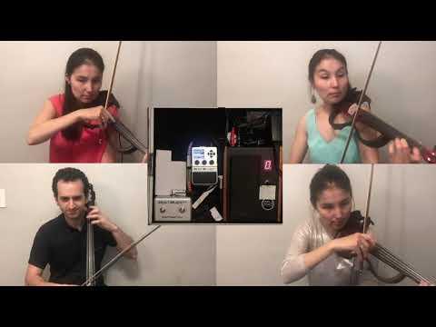 Elegance String Quartet in Philadelphia