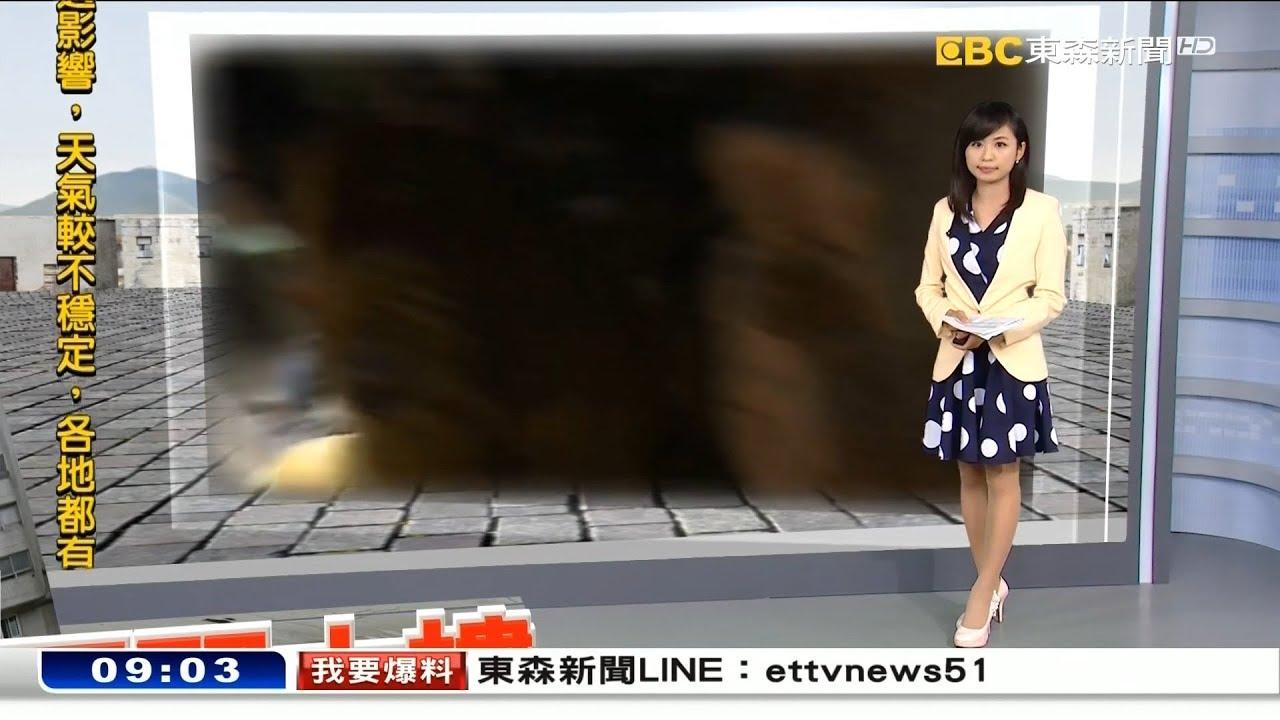 東森新聞主播李樺仙 新聞播報片段(2018/2/10) - YouTube