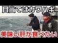 #1 カワハギ釣りのはずがまさかの魚が・・・ の動画、YouTube動画。