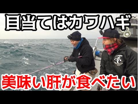 #1 カワハギ釣りのはずがまさかの魚が・・・