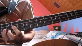 Red Hot Chili Peppers - Snow ( Hey oh ) bass cover