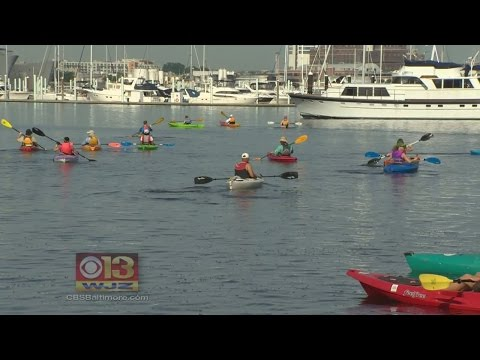 Flotilla For A Healthy Harbor And Bay Event