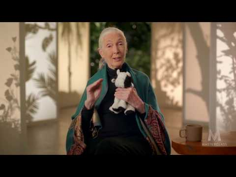 Dr. Jane Goodall Teaches Conservation | Advocacy Strategies for Earth Day