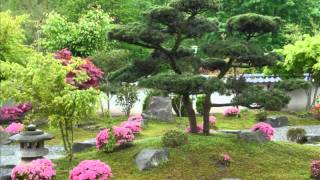 Japanese Garden in Bielefeld - Germany