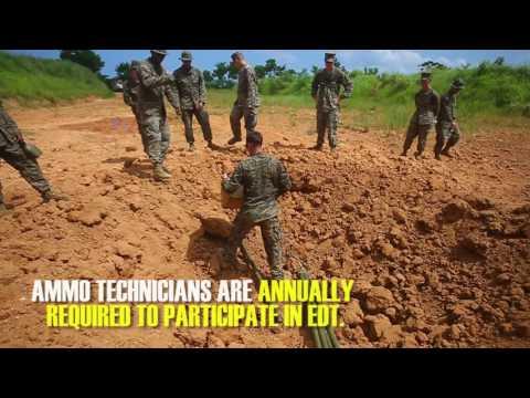 Ammo Tech Marines, EOD Marines work alongside each other in emergency destruct training