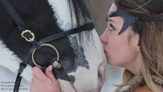 Фотосессия Юлии с конем Заком