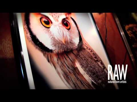 RAW ARTISTS Cincinnati PROMO