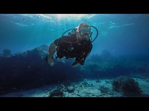 Sunken Treasure Episode 3 - Molasses Reef