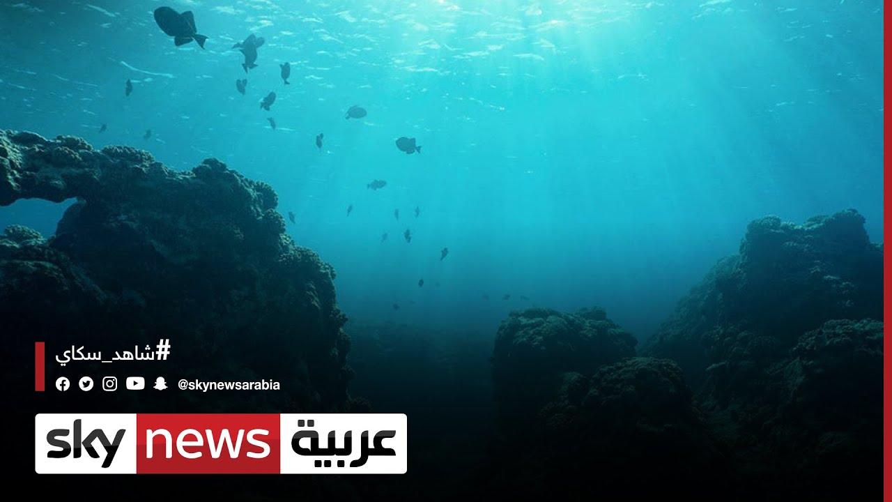 الأمم المتحدة تشدد على حماية المحيطات من التلوث  - 15:56-2021 / 6 / 9