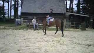 Mon cheval d