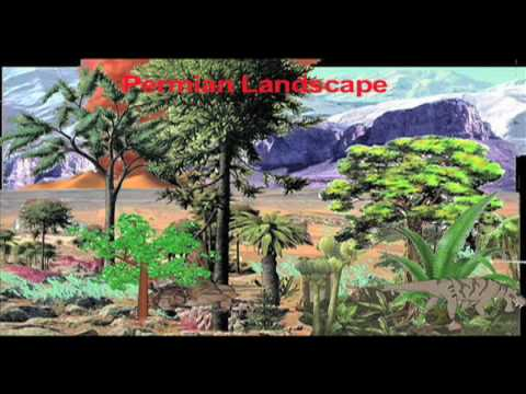 Ultra World Story Geologic Time Carboniferous Permian.mov