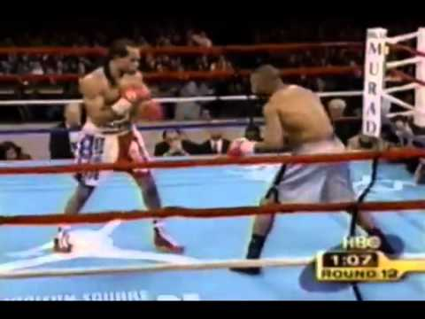 Roy Jones Jr - Can't Be Touch