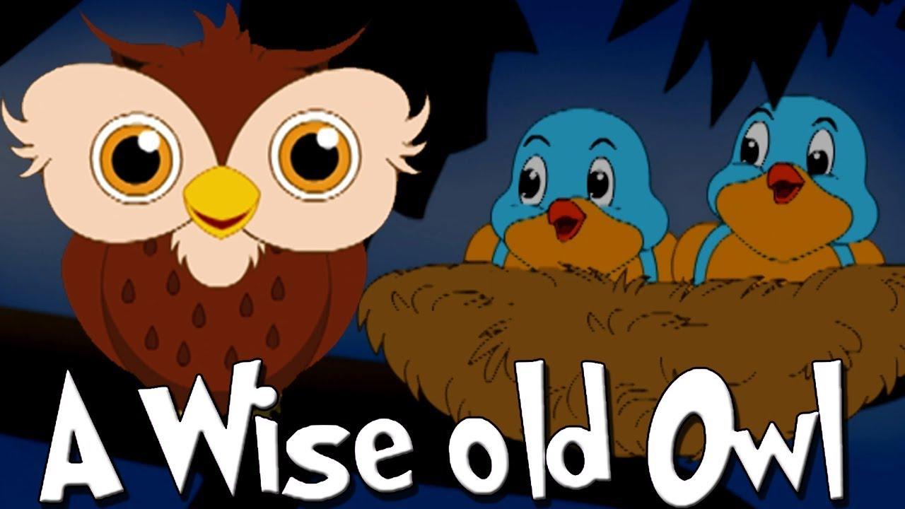 A Wise Old Owl Lived in An Oak Poem | Original Nursery Rhymes | English  Rhymes For Children