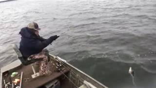 Fighting Subfreezing Temperatures Oฑ Lake Monticello