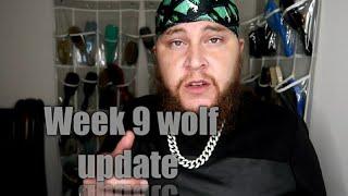 Week 9 Wolf Update