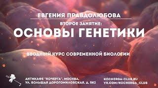 Евгения Правдолюбова: Вводный курс современной биологии. Второе занятие: основы генетики