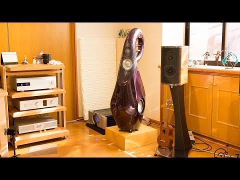 INSTALL VIVID AUDIO G3GIYA my room - For Music company