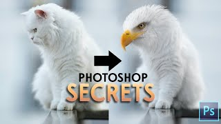 Photoshop Tutorial - Blend Animals screenshot 3