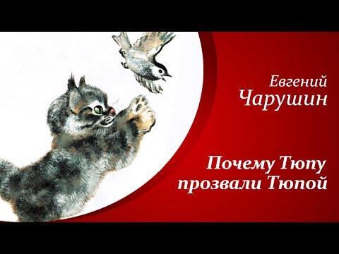 Рассказы о животных для детей     Е.И. Чарушин - Друзья - Почему Тюпу прозвали Тюпой🐈