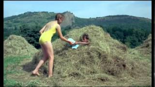 Le pebougnat (1970) Streaming en ligne en Français
