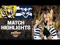 Richmond V Geelong Highlights | Second Preliminary Final, 2019 | AFL