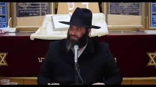 הרב רונן שאולוב - מאיזה מידה אדם צריך להיזהר ממנה ?
