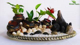 Tabletop Plants Decoration Idea | Indoor Plants Decoration | Plants Growing Idea//GREEN PLANTS