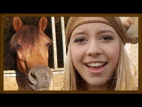 Pferde klaun  Einfach Allie