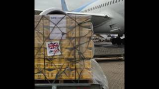 UK aid for Haiti leaving from Gatwick via Thomson Airways flight to Dominican Republic