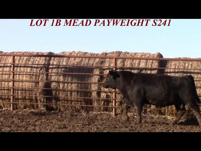 Mead Farms Lot 1B