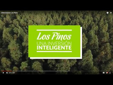 Urbanizacion Los Pinos