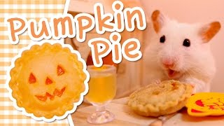 🎃 Pumpkin Pie | HAMSTER KITCHEN 🎃